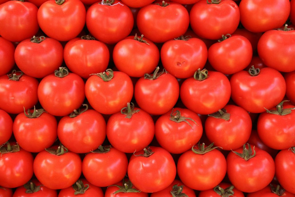 multiple tomatoes in a row
